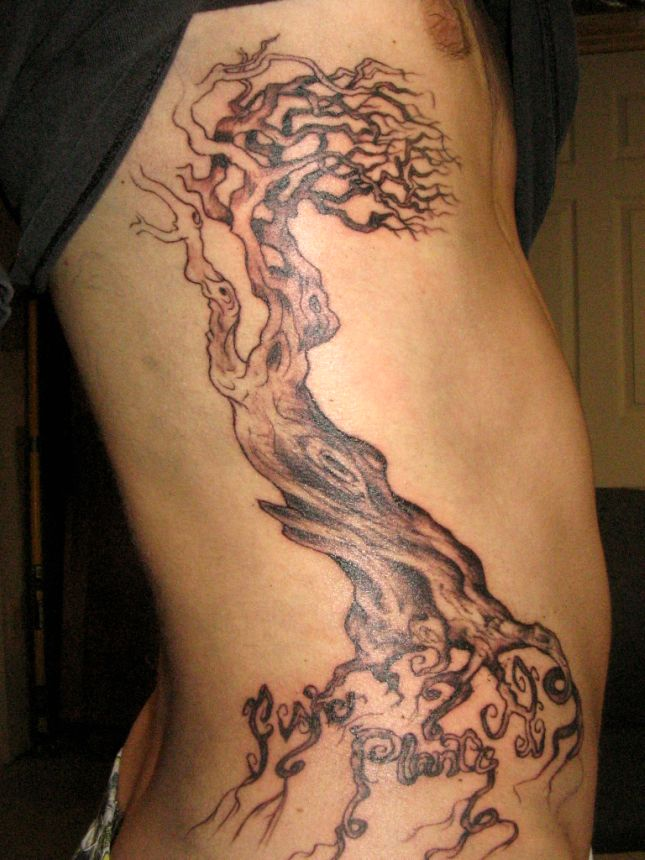 Tribal Tattoos Designs Family Tree Tattoos Ideas