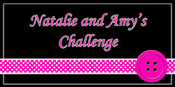 Natalie and Amy Challenge Blog