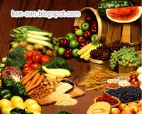 Nutrisi Yang Tepat Untuk Melawan Kanker