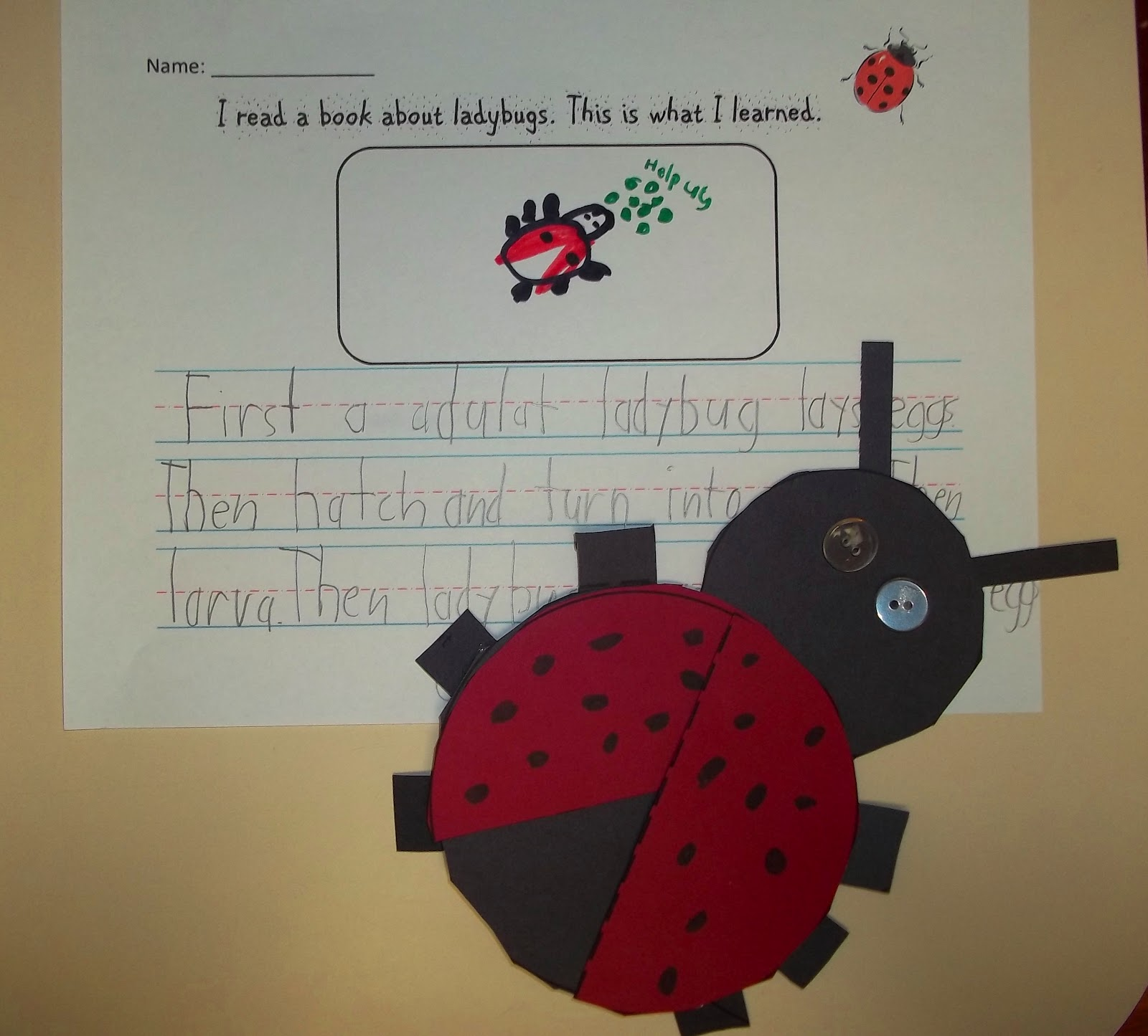 Sweet tea classroom ladybugs in the classroom ladybug writing prompt pooptronica Gallery