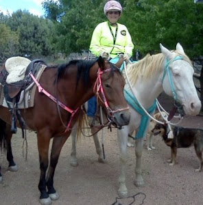 My Posse Horses
