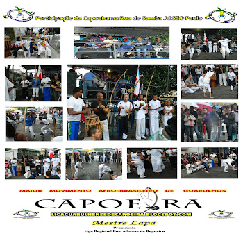 RODA DE CAPOEIRA NA RUA DO SAMBA 2012