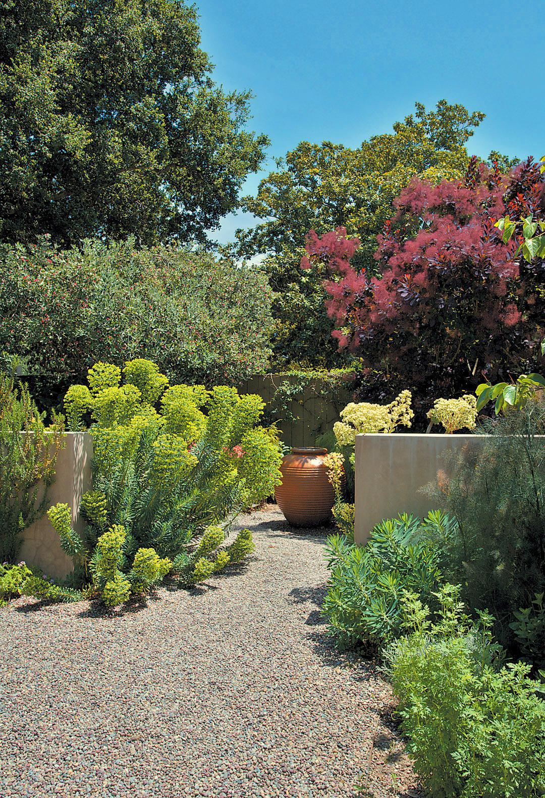 Garden bloggers fling bernard trainor garden preview for Mediterranean garden designs