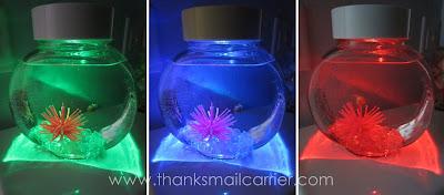 fish colored lights