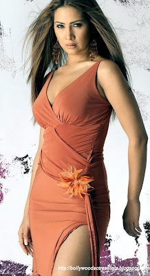 Kim, Kim Sharma, bollywood, bollywood actress, picture of bollywood actress