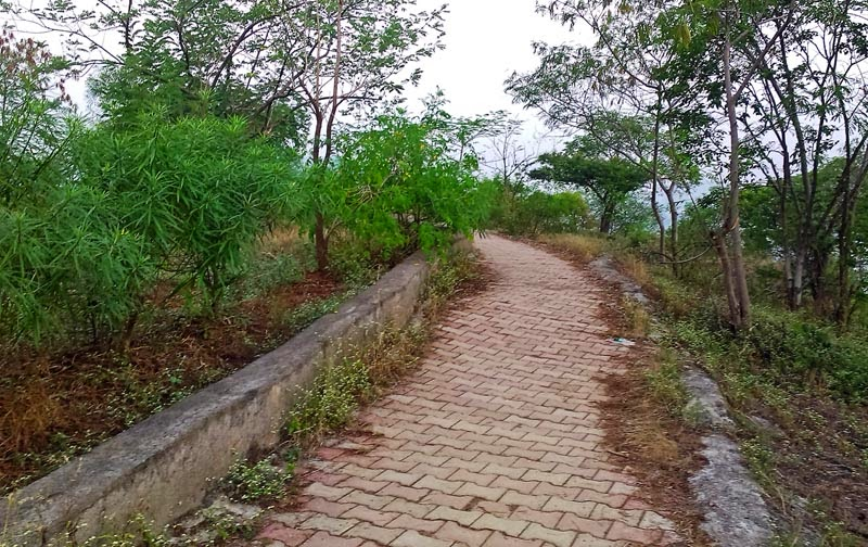 Pathway on the Hill