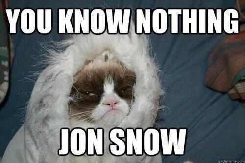 No sabes nada Jon Nieve grumpy cat - Juego de Tronos en los siete reinos