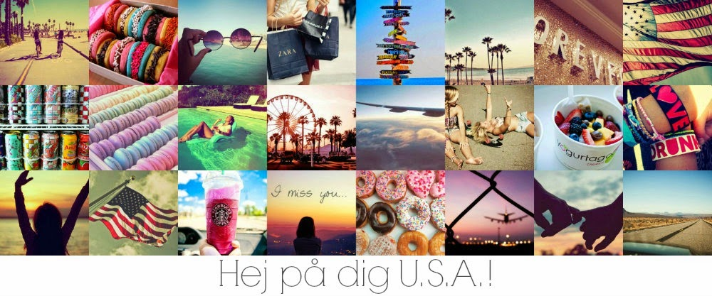 Hej På Dig U.S.A!