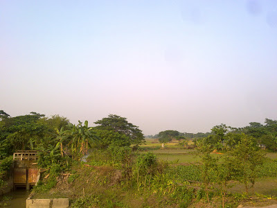 Green village picture of Bangladesh