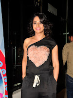 Rakul preet dazzling at Size Zero Premier-cover-photo