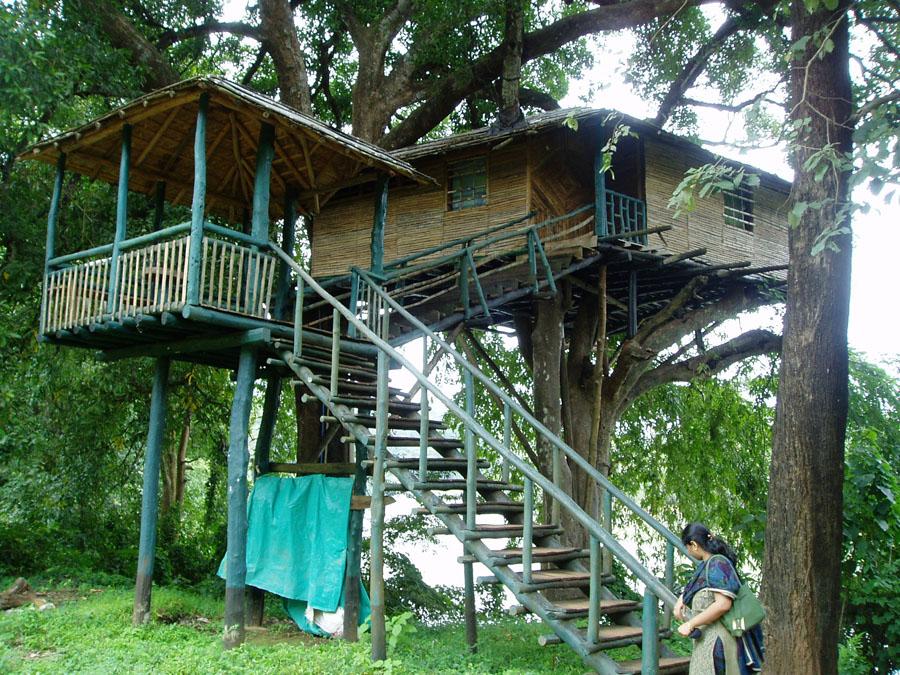Viaggiare le case sugli alberi for Case in legno sugli alberi