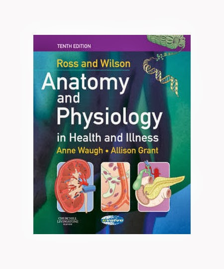 Wunderbar Ross And Wilson Anatomy And Physiology Online Fotos ...
