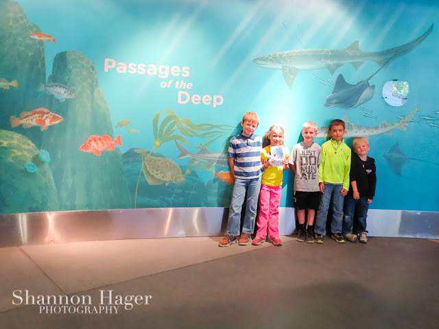 Shannon Hager Photography, Oregon Coast Aquarium