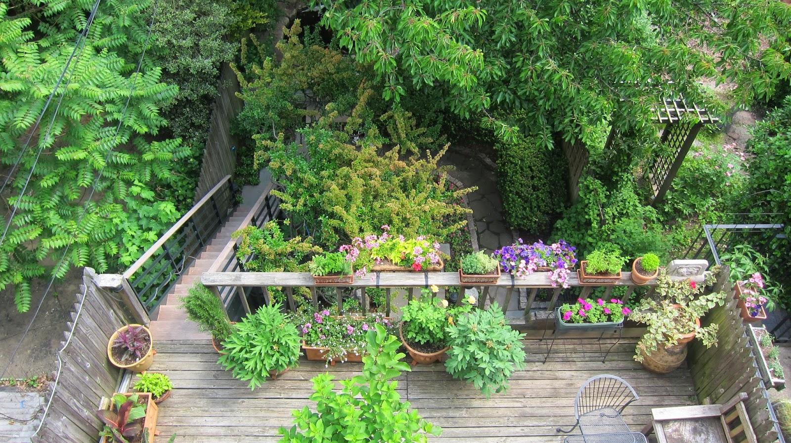 Robins Kitchen Garden City 66 Square Feet Plus June 2014