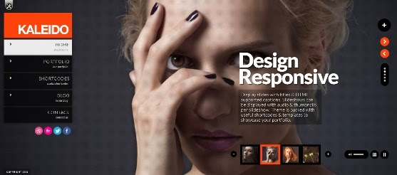 Kaleido Responsive WordPress Theme
