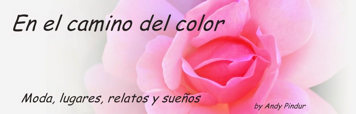 En el camino del color