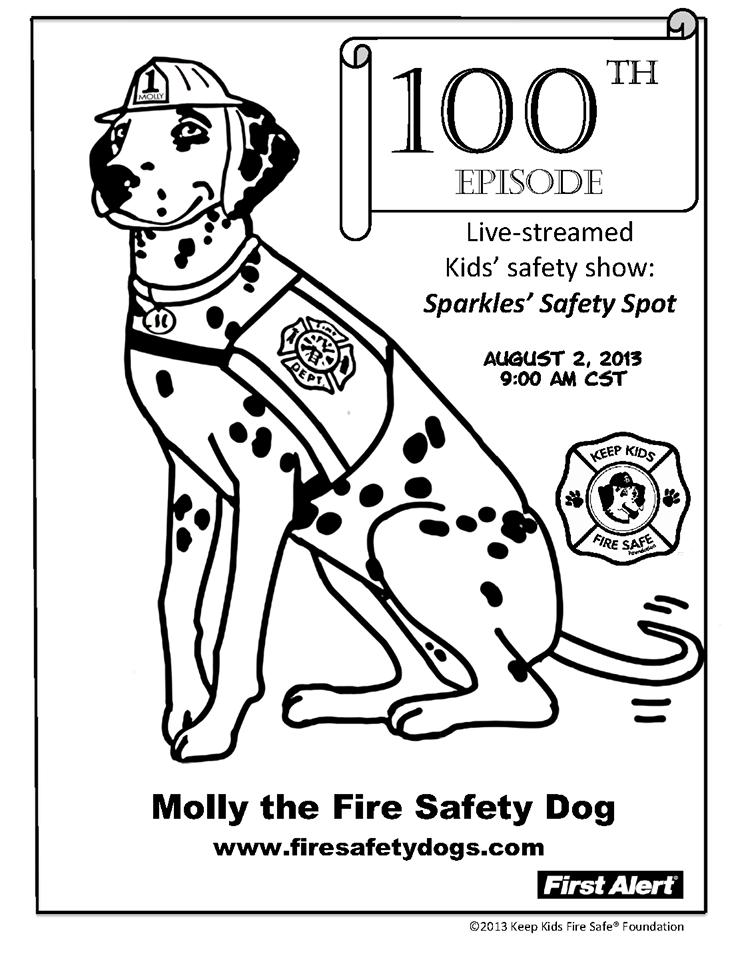 Fire Safety Rocks July 2013