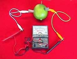 Membuat Baterai Dari Buah dan Sayuran
