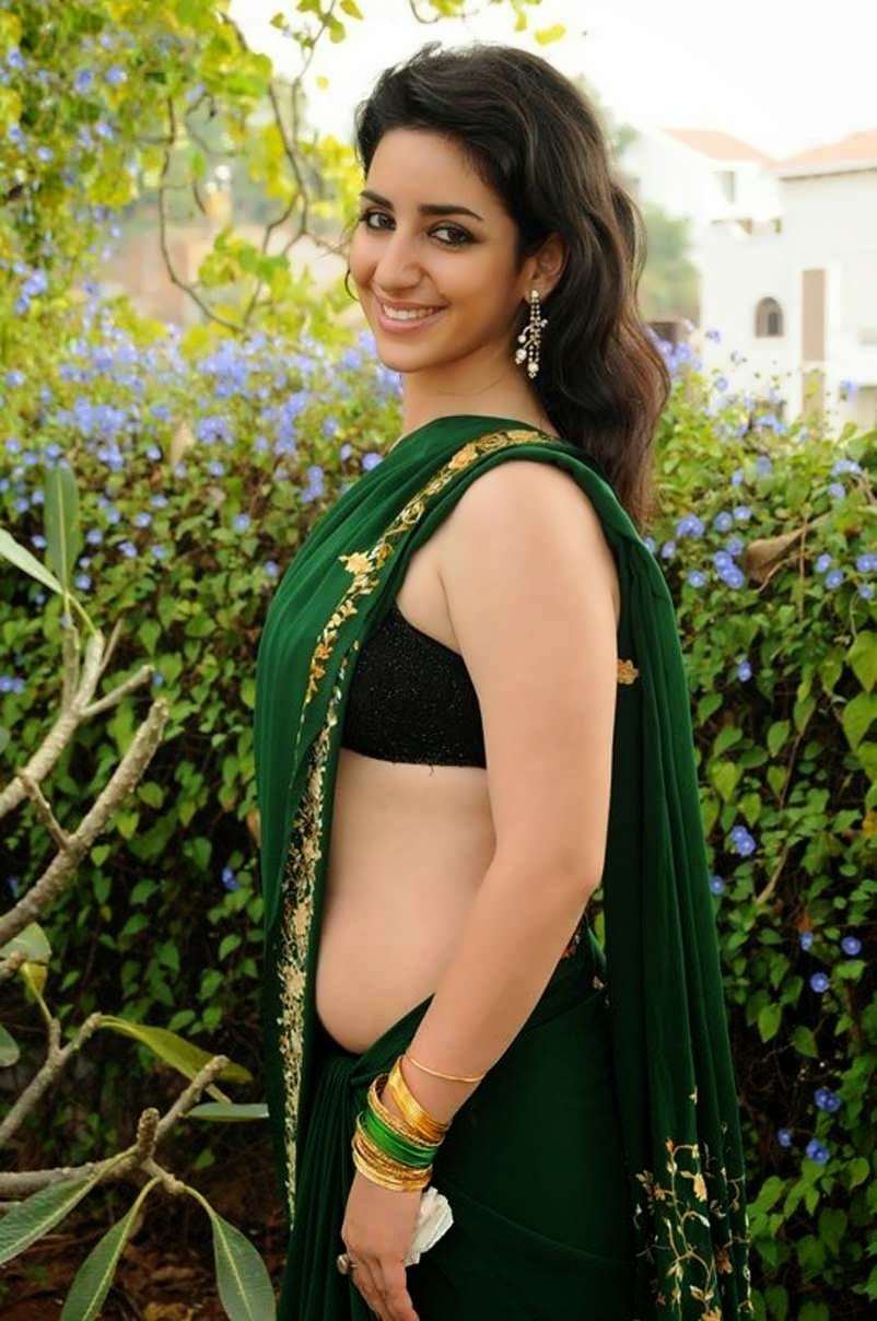 Confirm. happens. South indian actress hot in saree can recommend