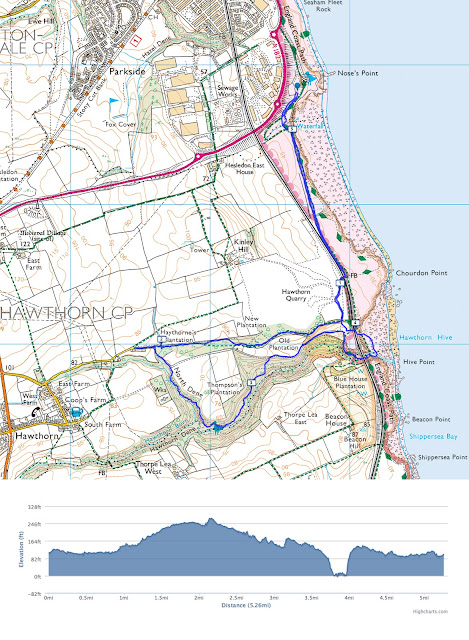 Hawthorn Hive Dene Walk, Seaham, County Durham woodland coastal walk short
