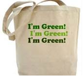 environmentally friendly grocery bag