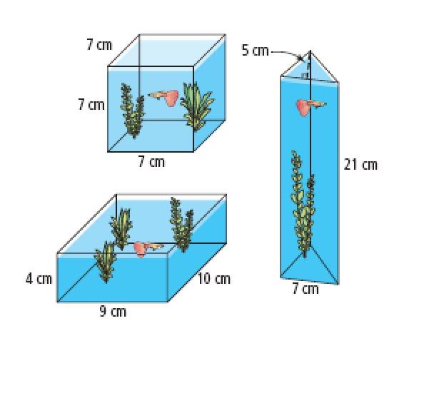 Volume of a aquarium 873 math 2010 february 2011 for Fish tank size calculator