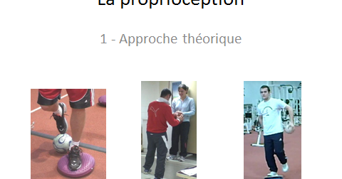 preparation physique football senior pdf