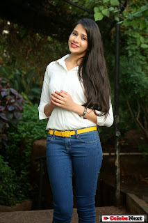 Actress Krutika Singhaal Pictures in Tight Jeans at Silk India Expo 2014  0046