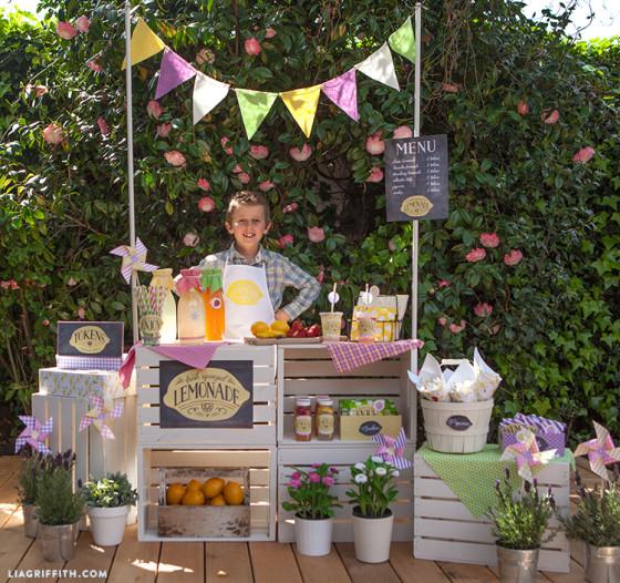 puesto_limonada_jardin_cajas_fruta