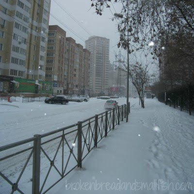 Picture of Semi Shumshinikh Street on the way to the clinic in Novosibirsk