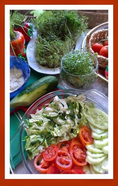kapusta pekinska, bazylia, szczypiorek, rzeżucha, pomidor, ogórek, sos czosnkowy