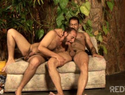Seo Gay Video Online Bear Ativo Fodendo Cu Peludinho Do Coroa Passivo