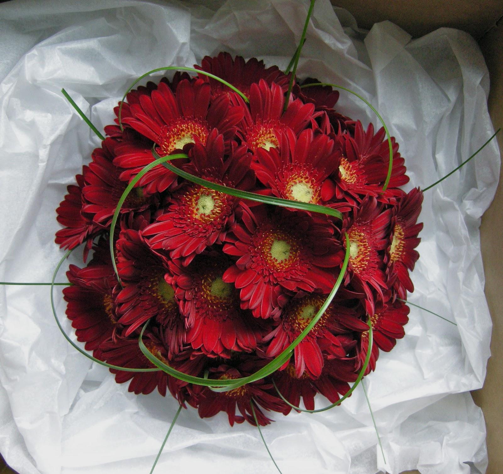 Red Gerbera Wedding Bouquets : Wedding flowers kim s red gerberas