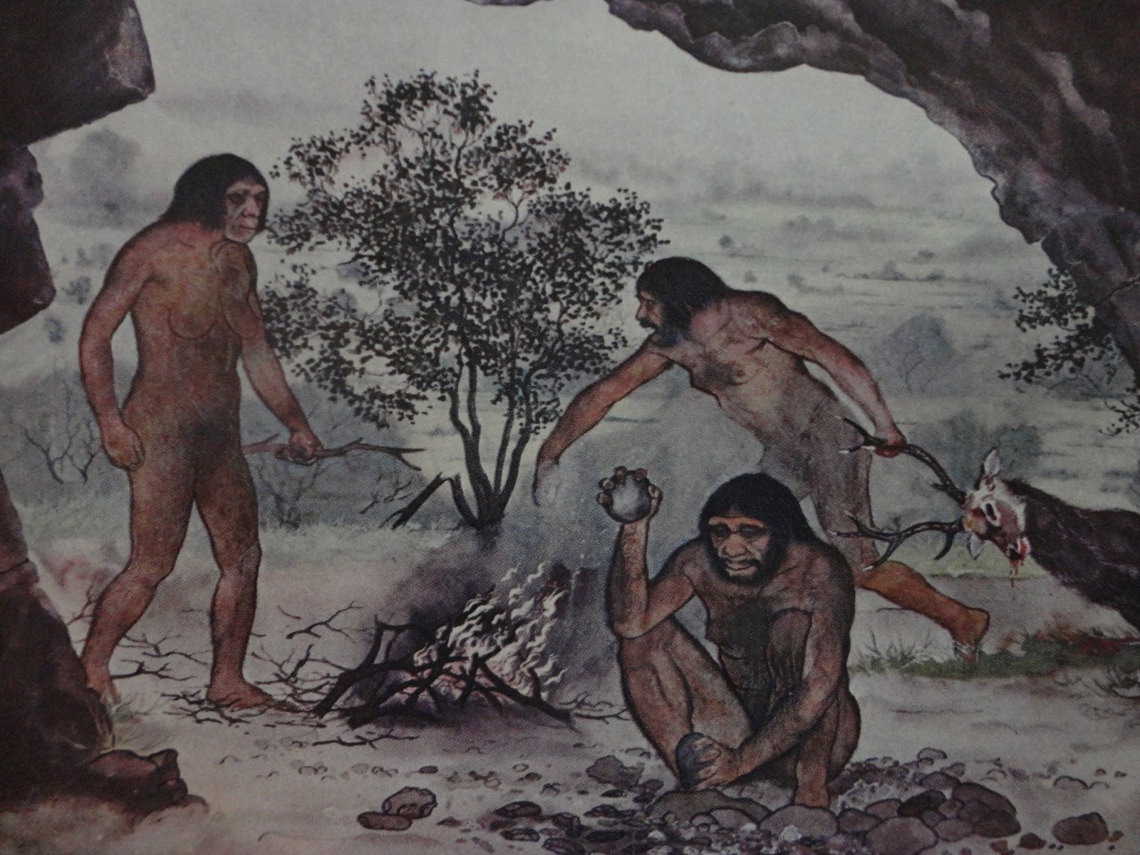 Image Gallery Neolithic Hunting