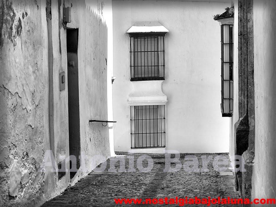 LUZ DE ARCOS .. ANTONIO BAREA