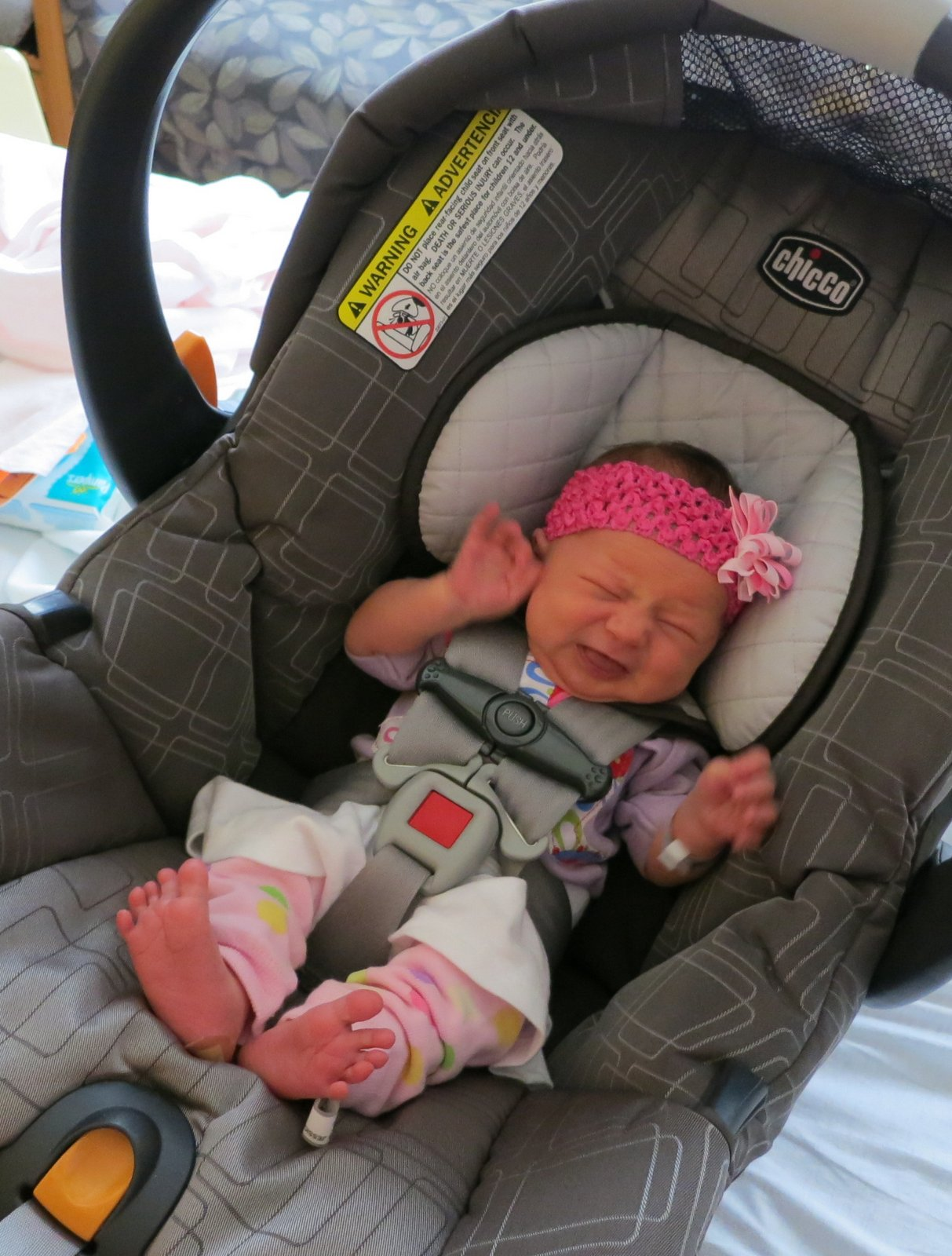 The bormann twins bringing home baby for Welcome baby home decorations
