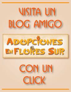 Visitá un Blog Amigo de Flores Sur