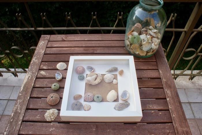 shells frame diy home