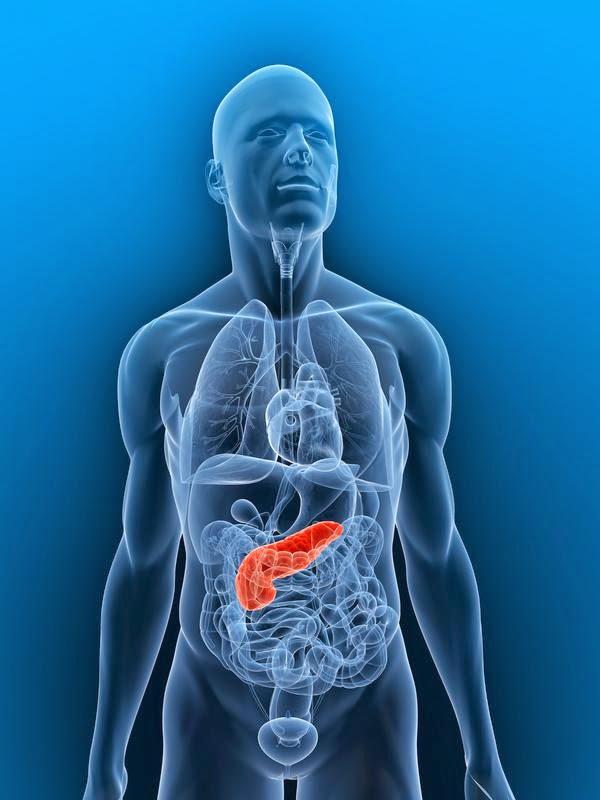 Pankreas Kanseri Nasıl Anlasılır