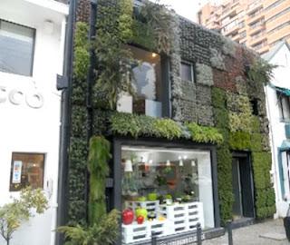 Paneles y muros verdes green wall panels construya f cil for Muros verdes beneficios