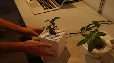 Interactive plants react and convey emotions