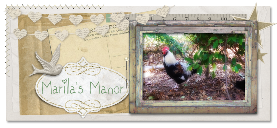 Marilla's Manor