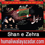 http://www.nohaypk.com/2015/10/shan-e-zehra-nohay-2016.html