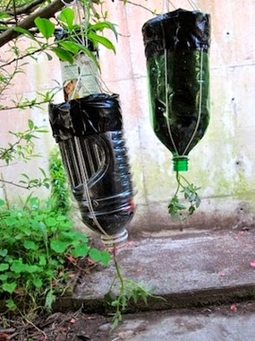 30 Awesome DIY Projects that You've Never Heard of - Upside-Down Tomato Planter
