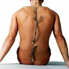 """""""calsea-plus-nasa-atasi-osteoporosis-inti-herbalindo-nyeri-sendi-rheumatik-patah-tulang-natural-nusantara-pertumbuhan-tulang-gigi-kalsium"""""""