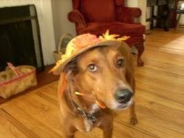 Dixie's Hat ...