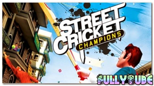 Street Cricket PC