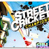Download Street Cricket PC Game