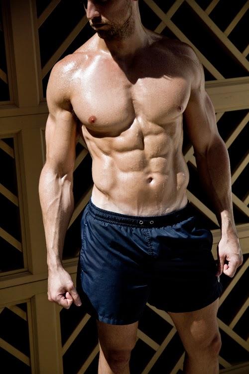 Shredded Shoulders ~ Bulking Basics 101