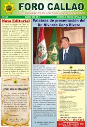 """BOLETÍN INFORMATIVO """"FORO CALLAO"""" Nº 1 - MARZO 2013"""